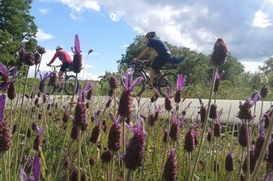 Rutas en bicicleta naturaleza